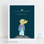 .little prince. poster